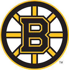Boston Bruins Cup Champs